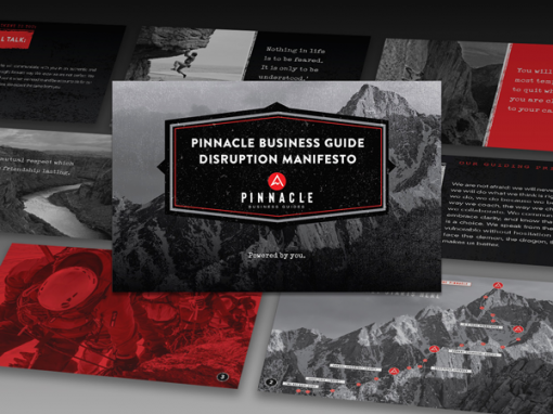 Pinnacle Business Guides